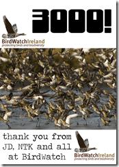 Birdwatch Ireland hits 3,000 likes on Facebook
