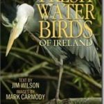 Freshwater-Birds-of-Ireland.jpg