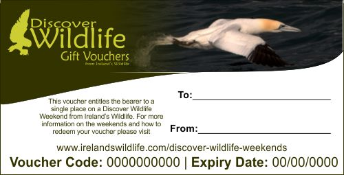 The perfect wildlife Christmas gift