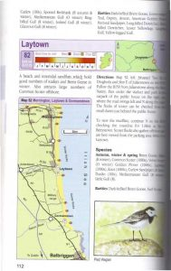 Finding Birds in Ireland Sample Page