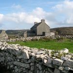 Cape Clear in Co. Cork is one of David Lindo's favourite Irish birding hotspots