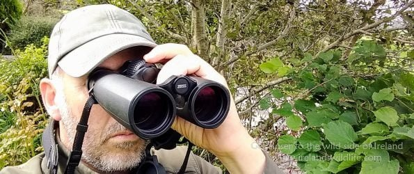 ZEISS Victory SF 10×42 Binocular Review